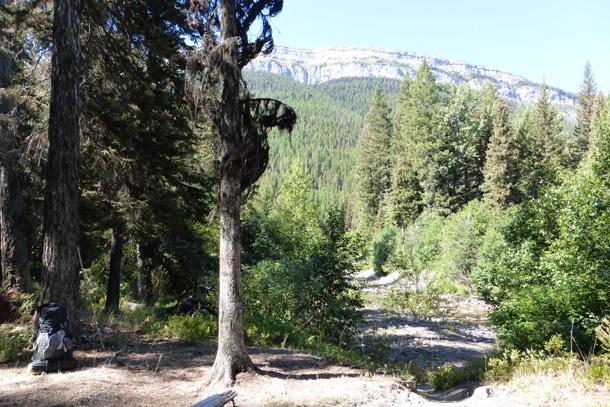 Campsite next to Dean Creek