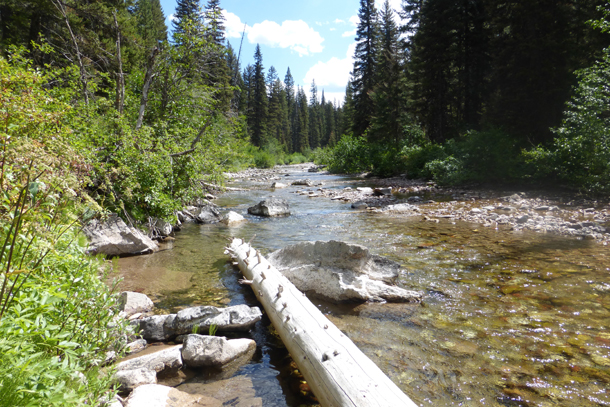 Resting spot along the Spotted Bear River Trail